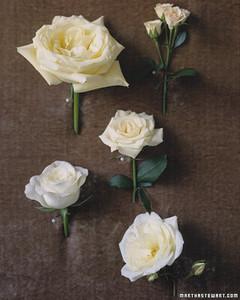 wed_sp99_roses_03.jpg