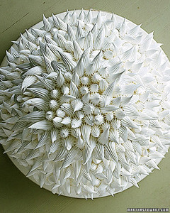 win00_chrysanthemum2.jpg