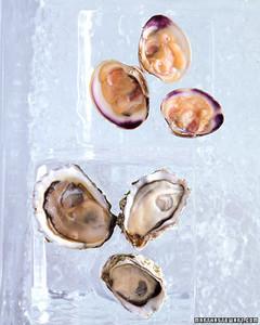 wa102620_win07_oysters.jpg
