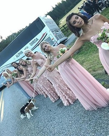 Julianne Hough's bridesmaids hitchhiking