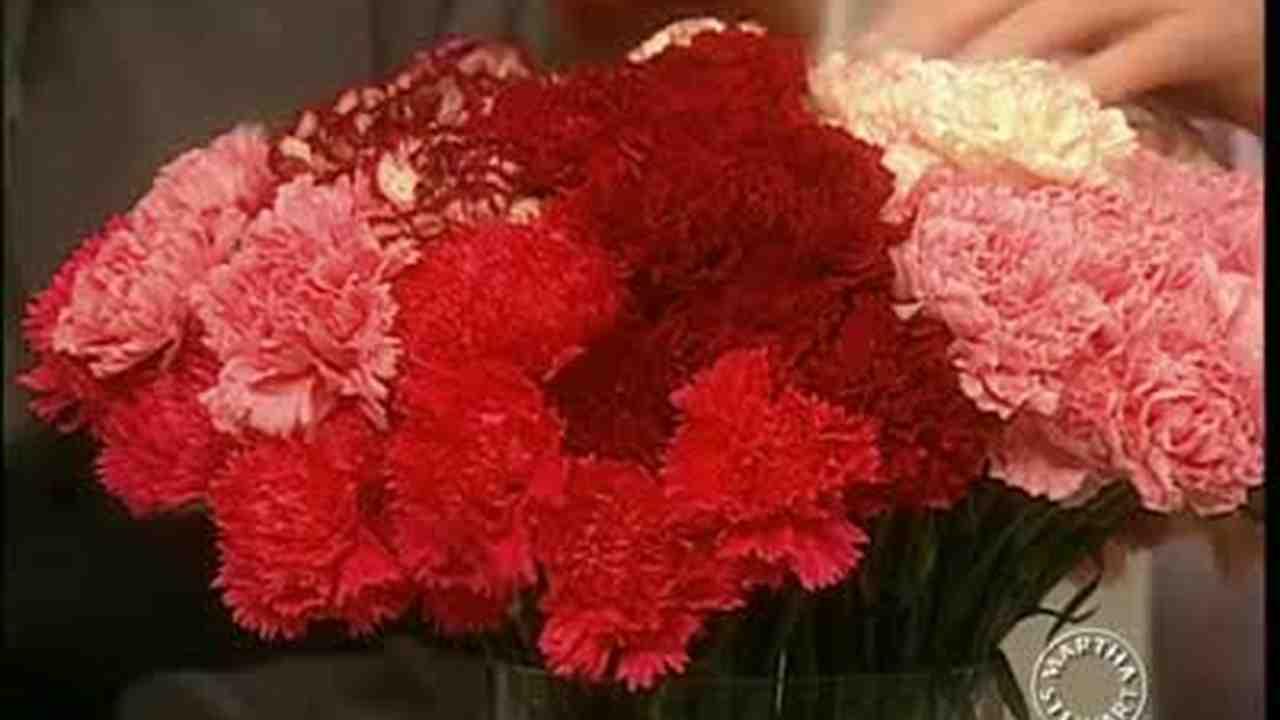 Elegant Video: How To Make Carnation Flower Arrangements | Martha Stewart Weddings