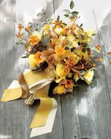 orchids-3-mwd107620.jpg