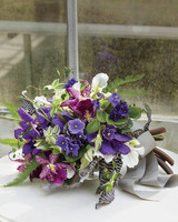 orchids-6-mwd107620.jpg