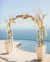 Driftwood and Orchid Wedding Arch