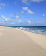 ws1882_palmetto_point_beach_1.jpg