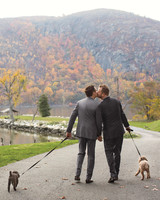 matthew-jack-dogs-0025-mwd109591.jpg