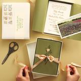 flower-box-163-170-comp-mwd109800.jpg