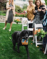 craig-andrew-wedding-dog-401-s111833-0215.jpg