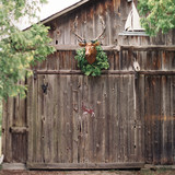 barn-staghead-door-county-wi-002-mwds110744.jpg