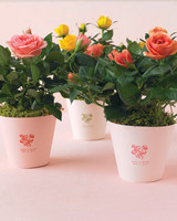 diy-floral-favors-mini-rose-bushes-sp10-0615.jpg