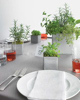 diy-floral-favors-planted-herb-pots-sp10-0615.jpg