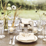 genevieve-scott-wedding-marthas-vineyard-0456-d111618-comp.jpg