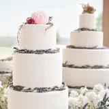 weddingcake-lavender-winn-bowman-thenichols-578-mwds110732.jpg