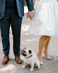 These Dogs at Weddings Are So Cute, We Can't Take It