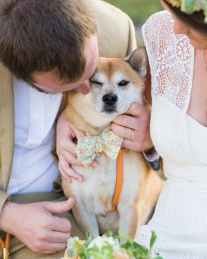 9 Dapper Dogs Wearing Bow Ties at Weddings