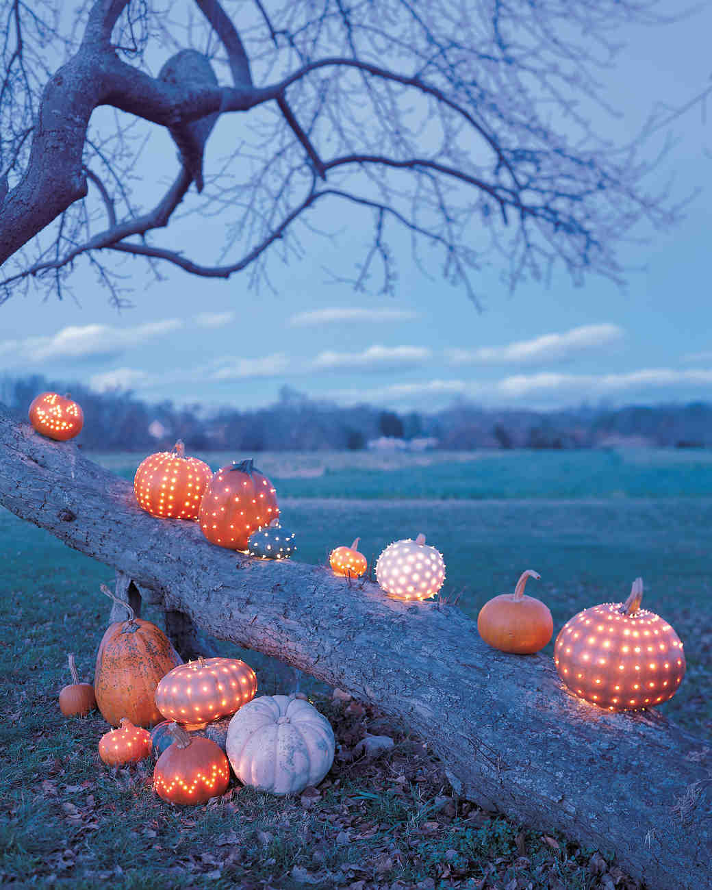 Pumpkins Decorated with String Lights