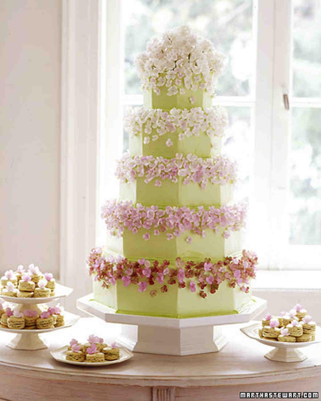 wa101825_win06_cake01.jpg
