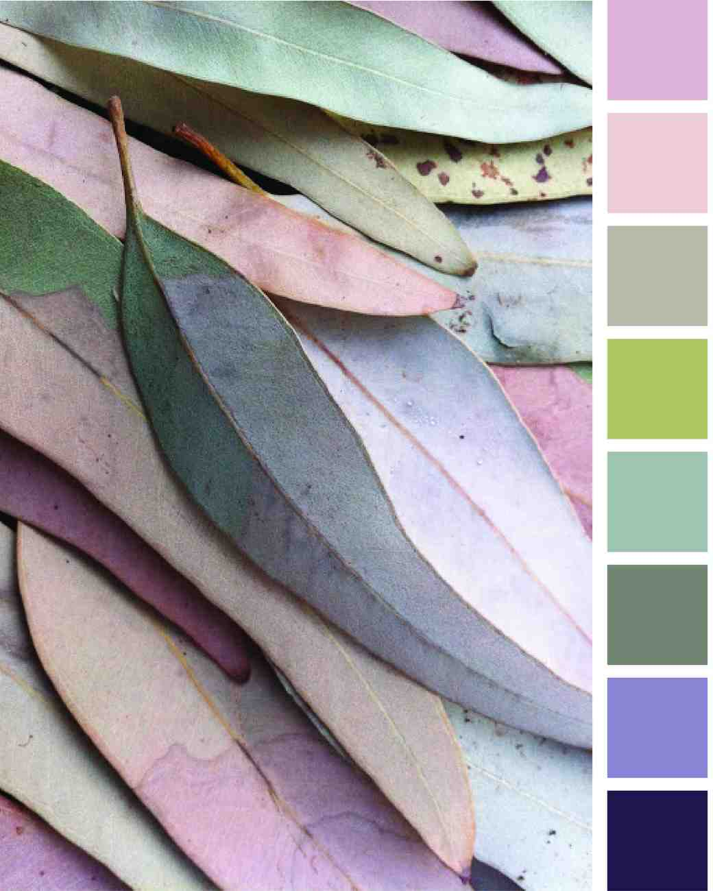 leaves-color-palette-0615