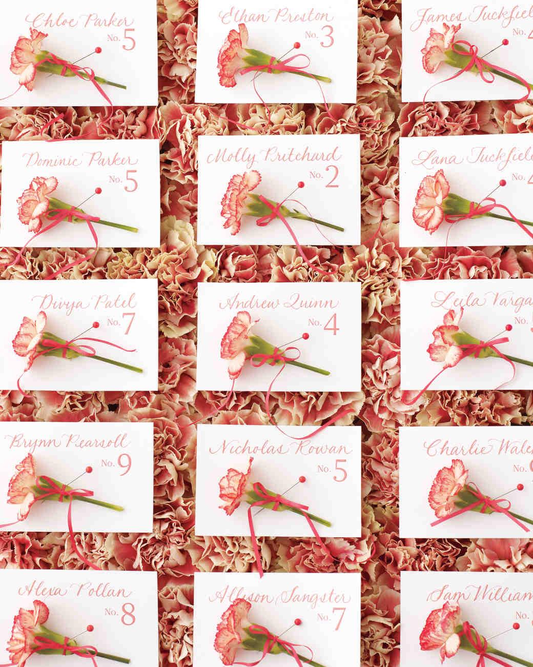 carnations-6-mwd108375.jpg