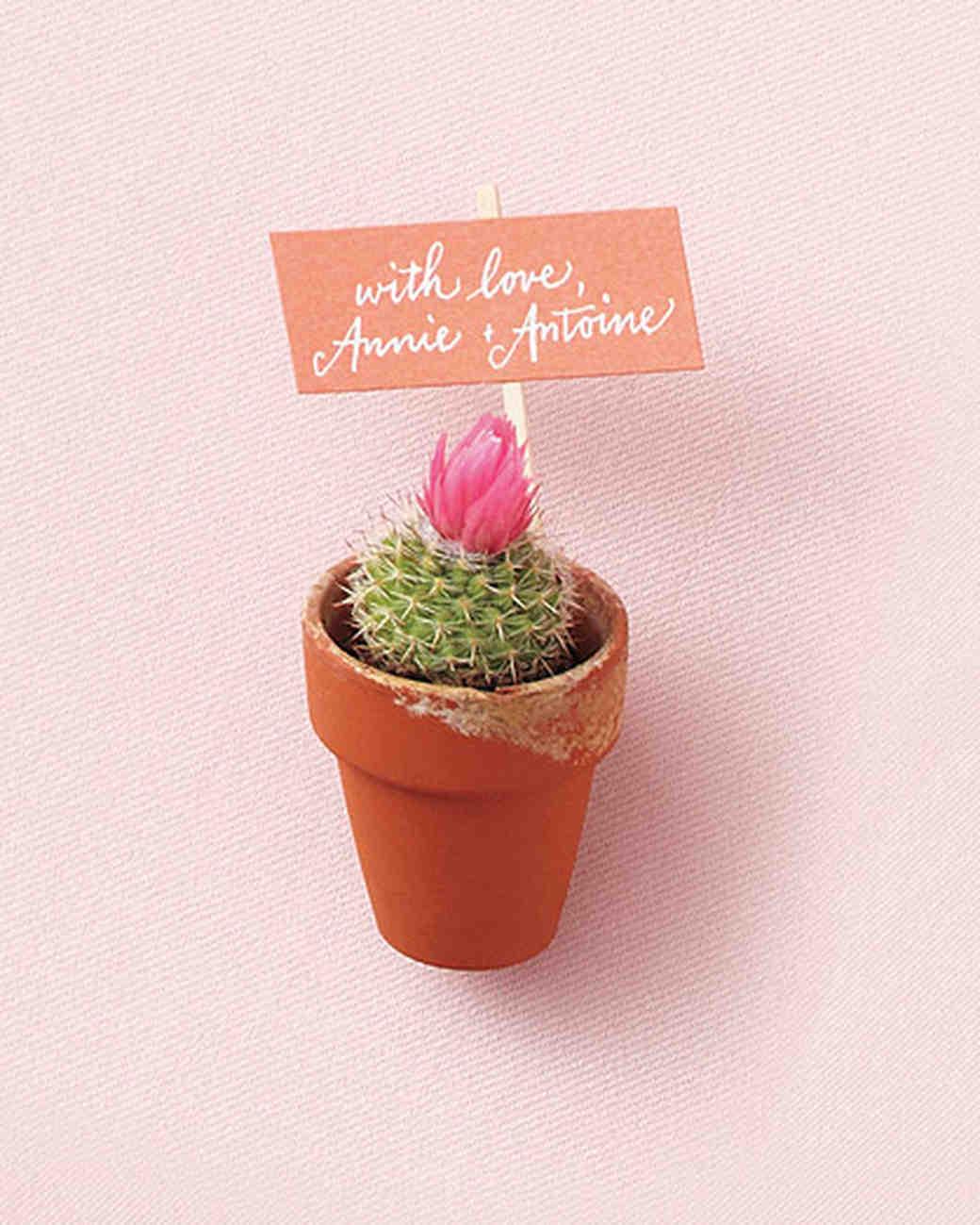 favors-cactus-mwd107607.jpg