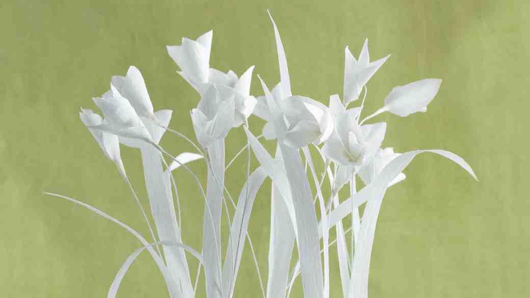 Crepe Paper Flower Bulbs