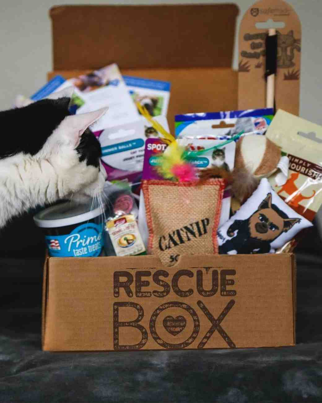 Rescue Box gift for cats