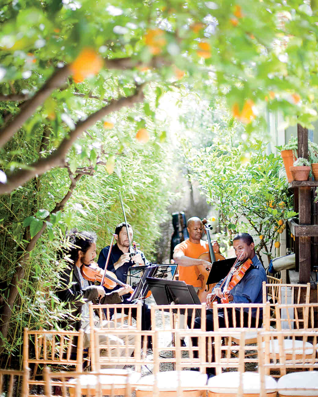 string quartet in courtyard