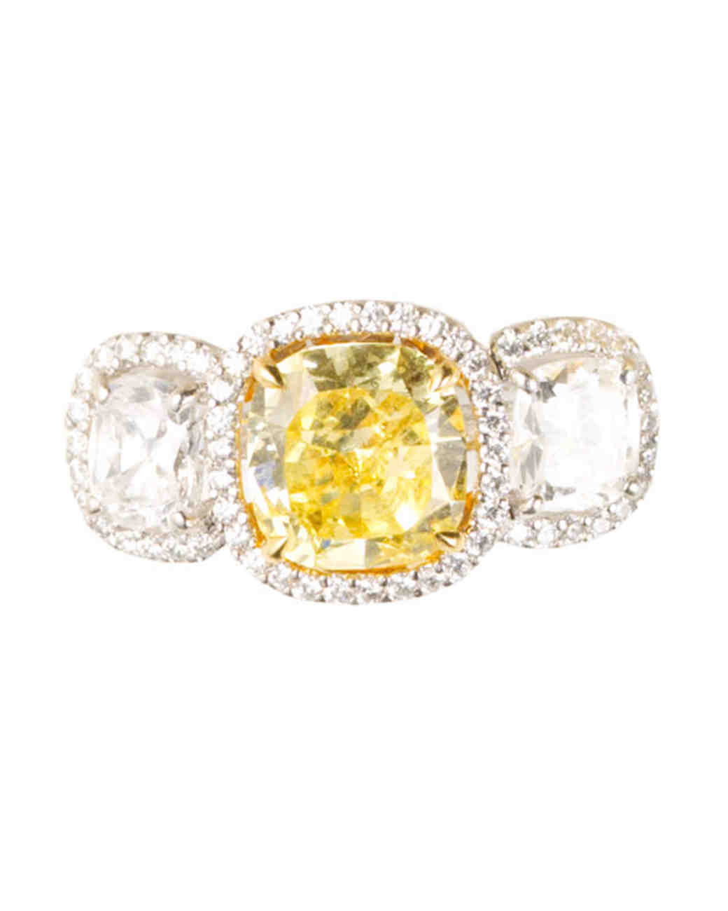msw_sum10_yellow_ring_katz.jpg