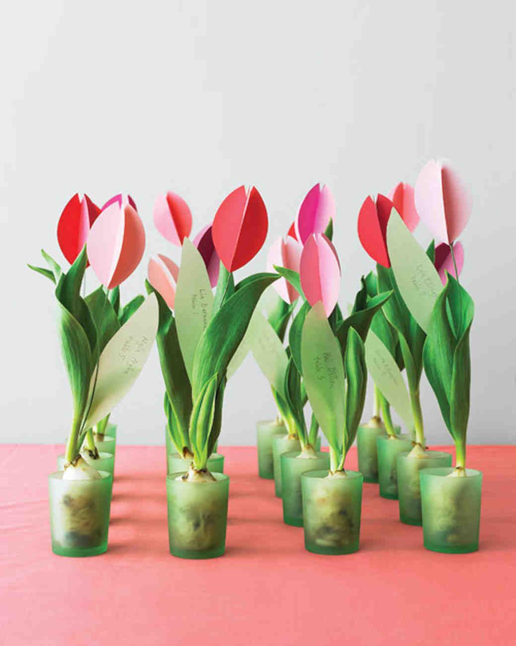 mwd105402_spr10_tulip04_prev.jpg