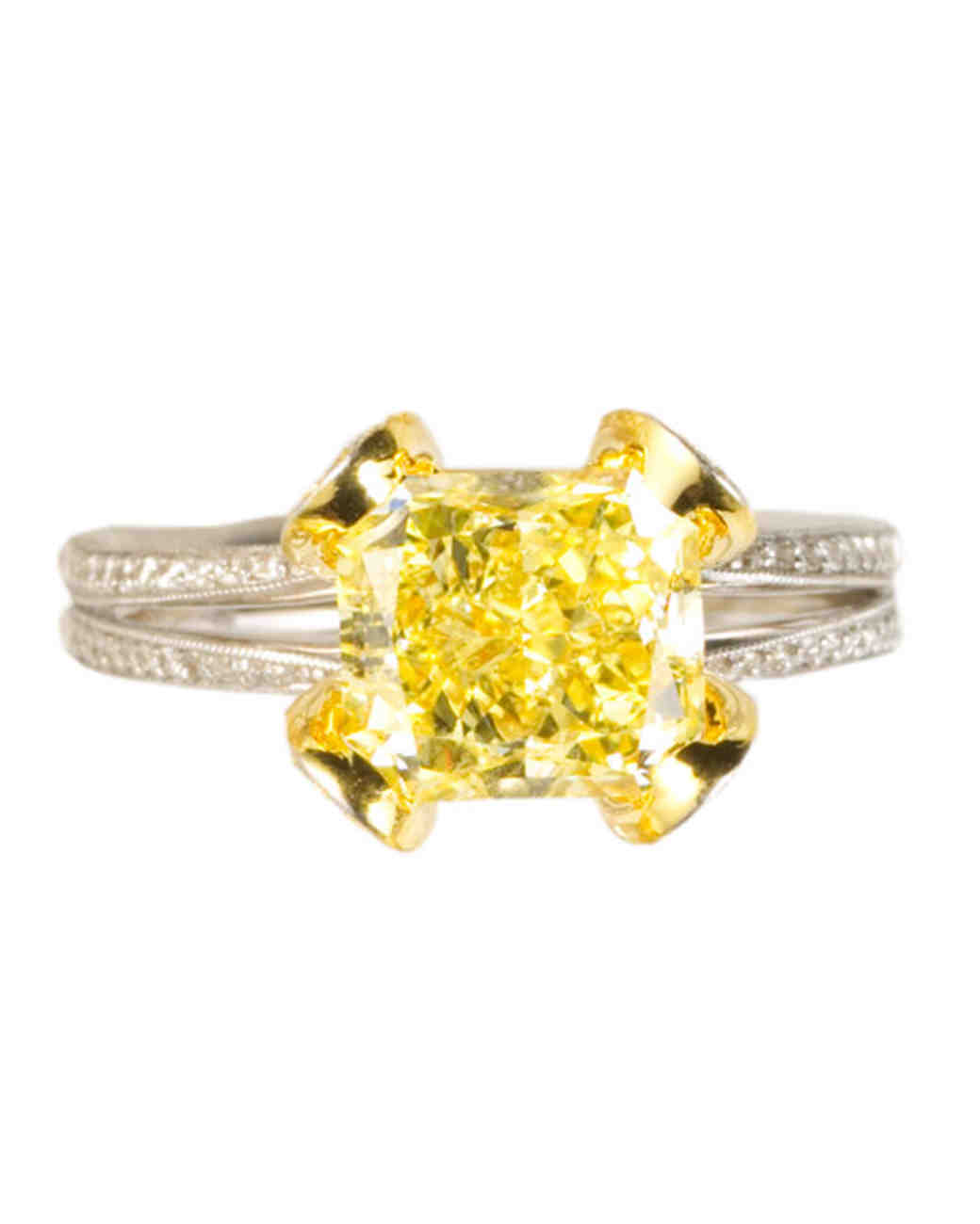 msw_sum10_yellow_ring_christse.jpg