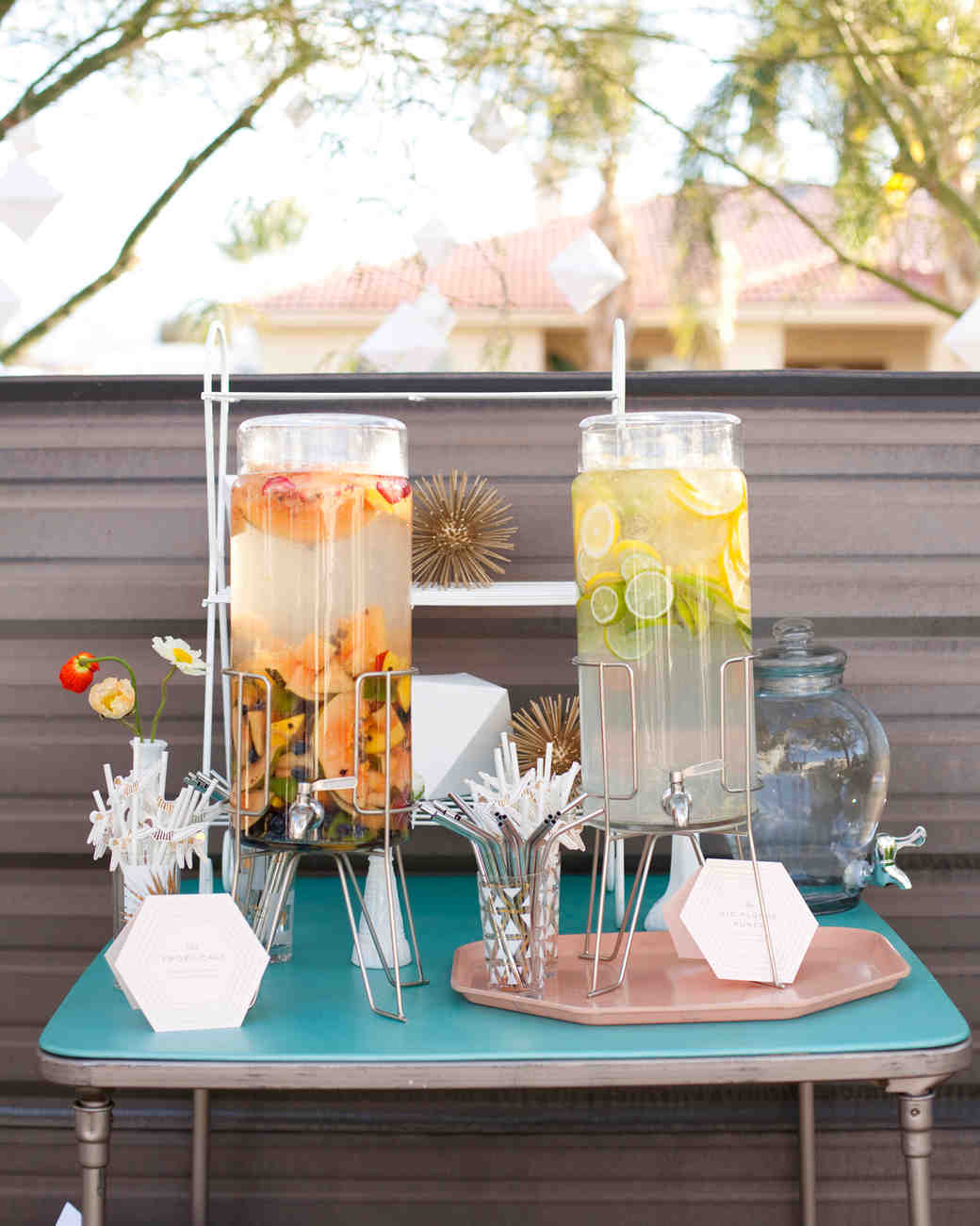Fruit-Infused Water Dispensers