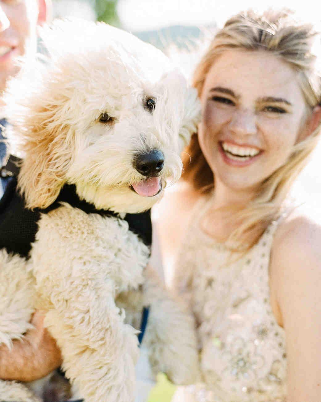 izzy tom wedding dog