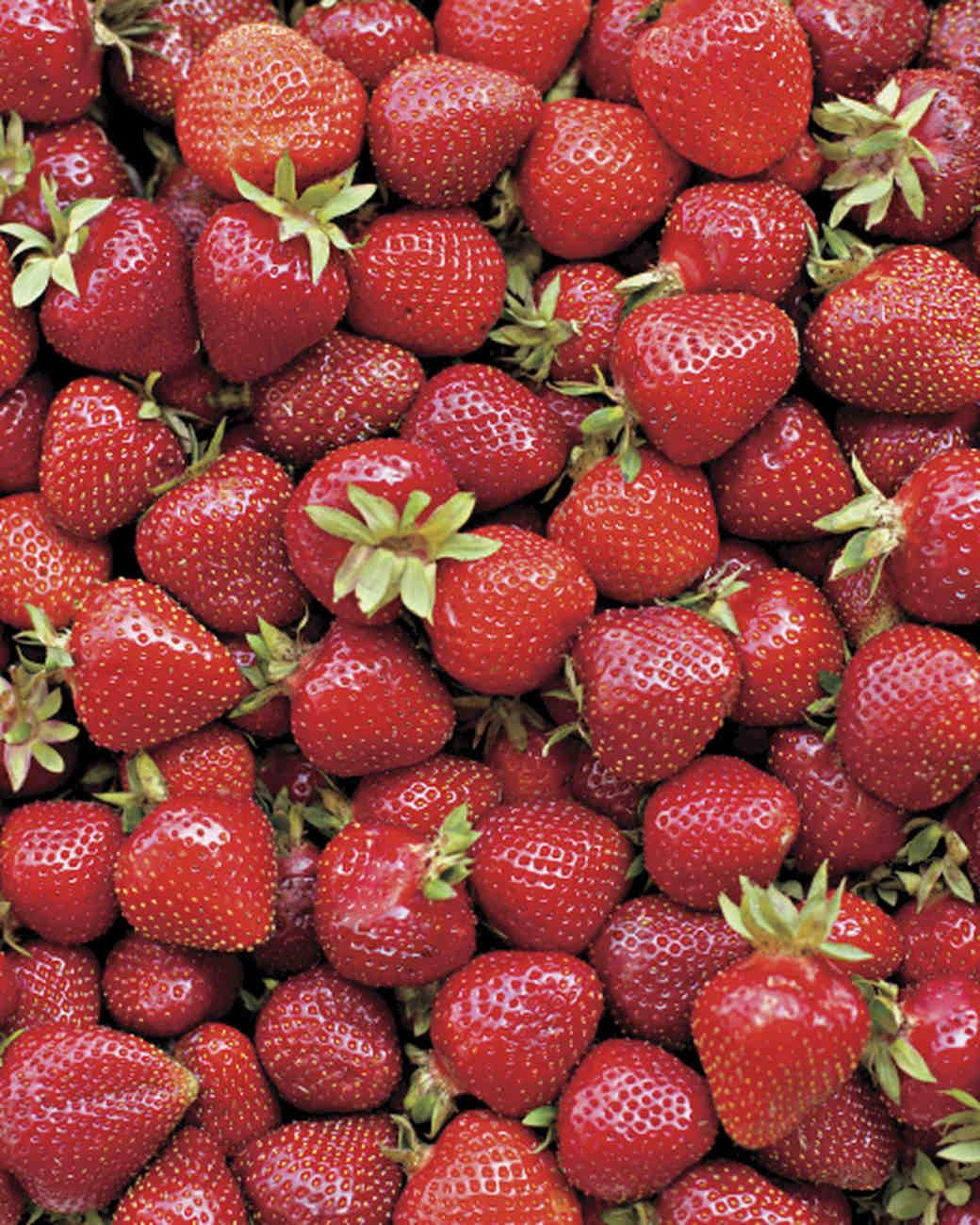 progress-report-strawberries-ms108726.jpg