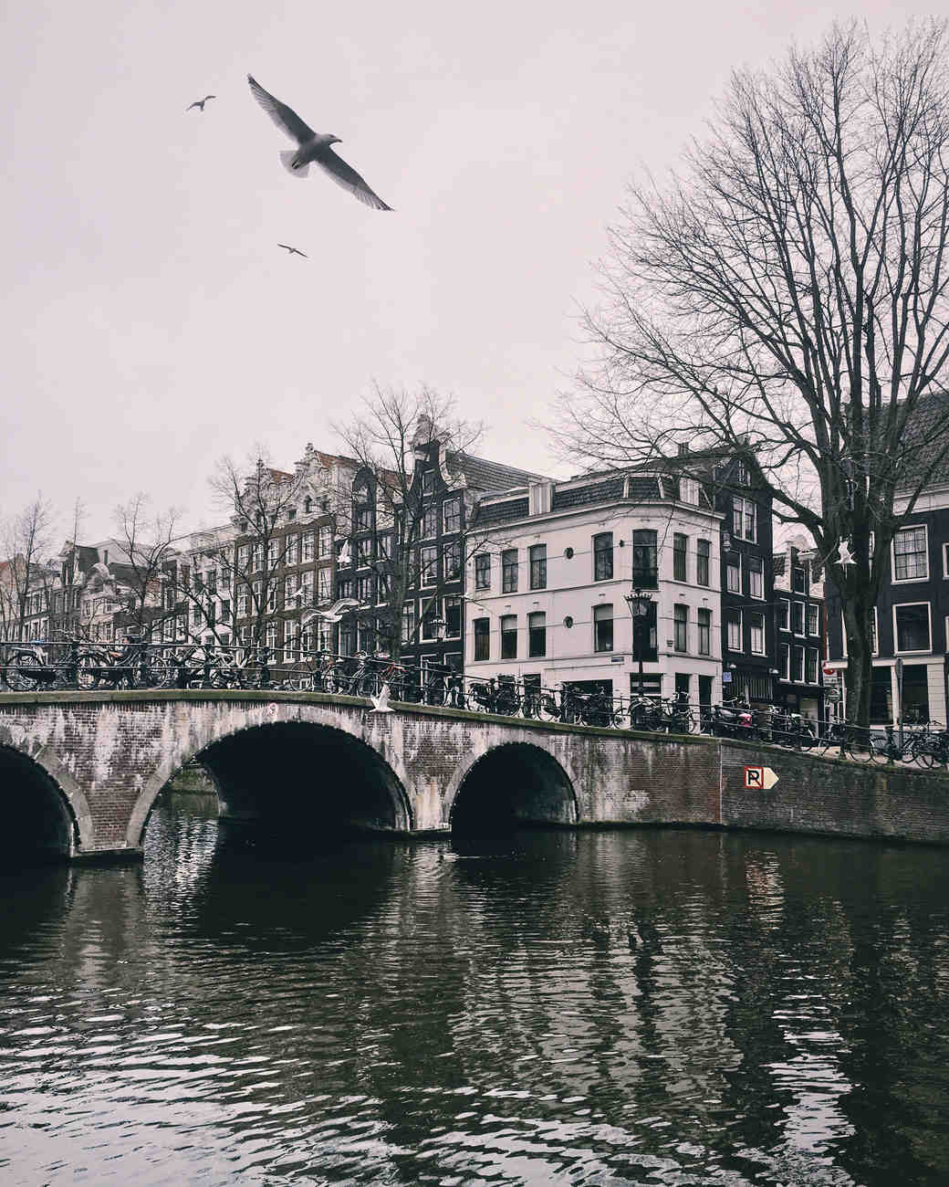 amsterdam netherlands travel photo