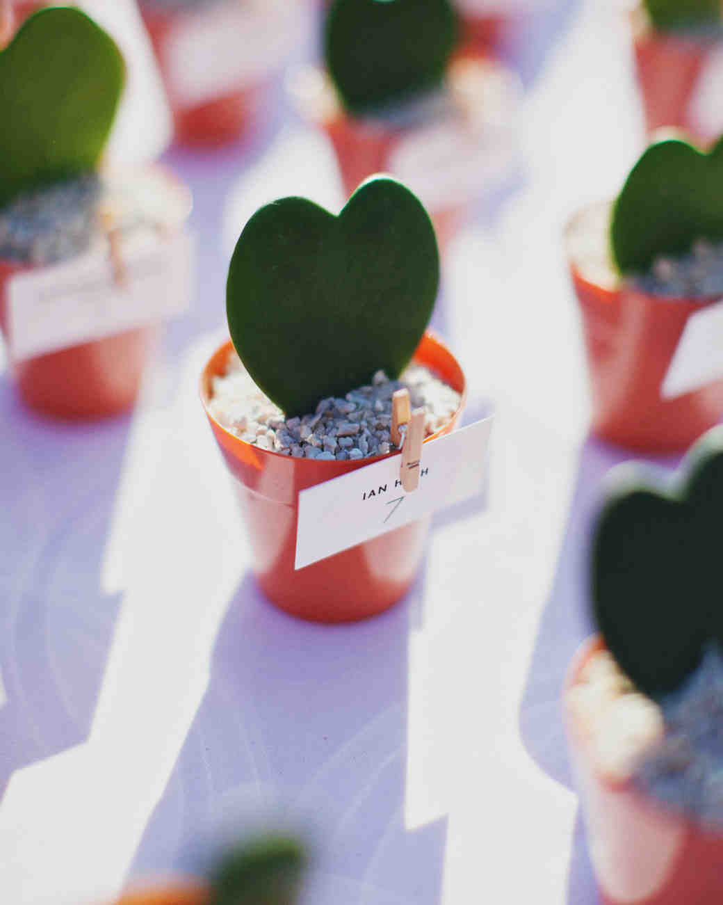 Heart Plant Escort Cards