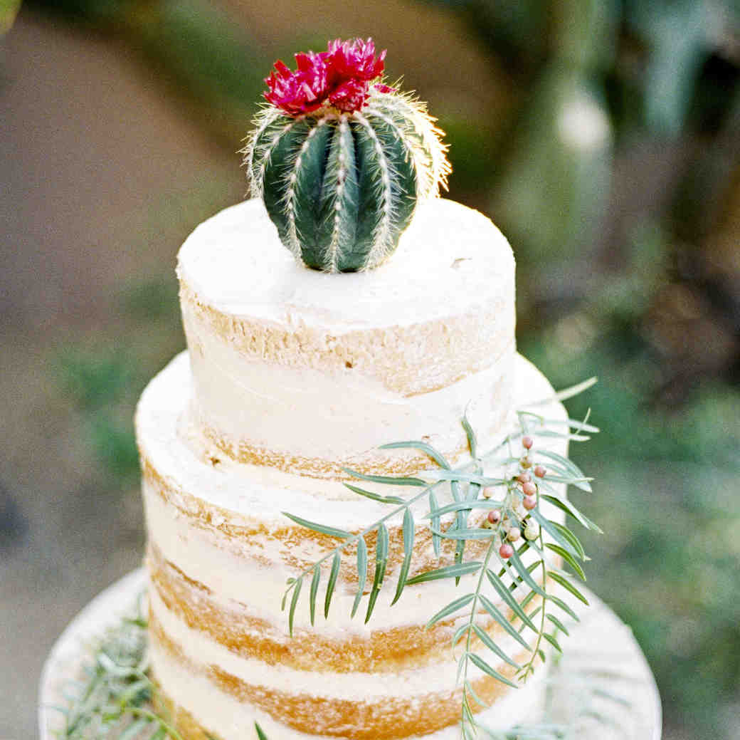 Lightly Frosted Wedding Cake Topped with Mini Cactus