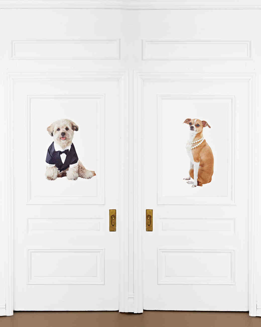 Pet Door Decal