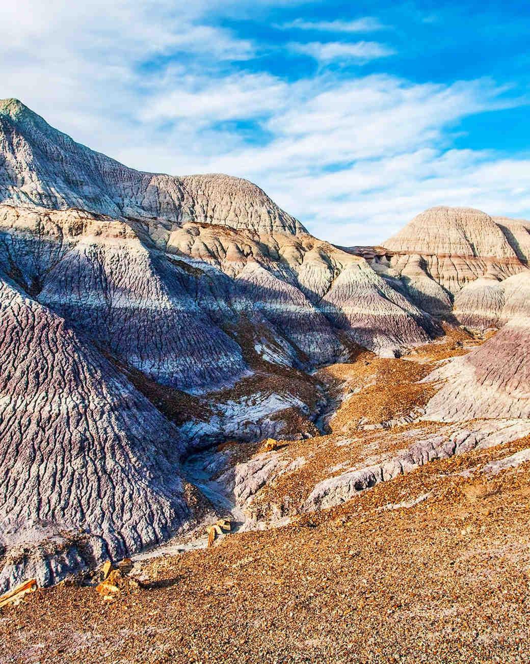 painted desert arizona honeymoon