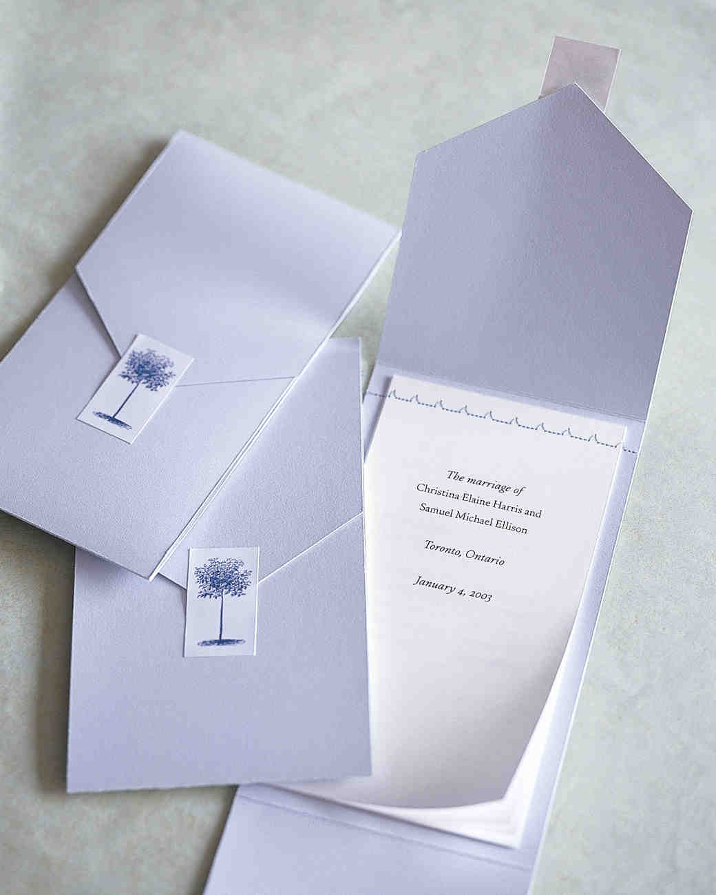 diy-wedding-ceremony-programs-ml083a06-0515.jpg