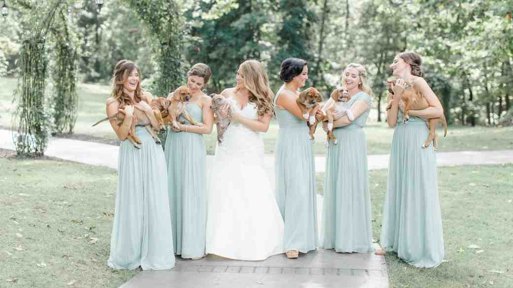Bridesmaids Hold Puppies Wedding Photo