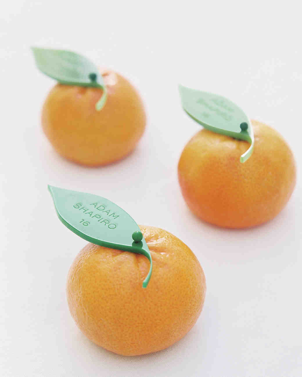 Tangerine Escort Cards
