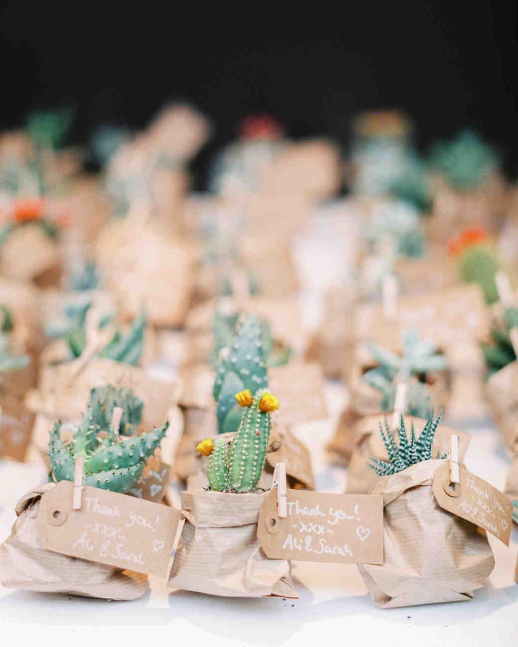 Mini Cactus Wedding Favors in Kraft Paper Bags