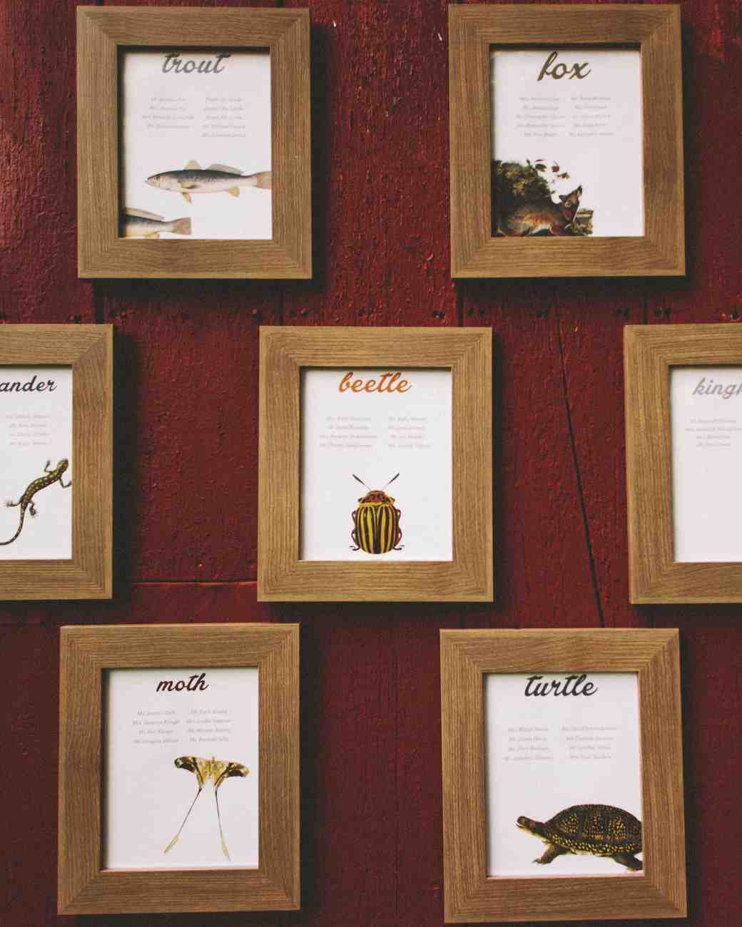 Animal Illustration Escort Cards