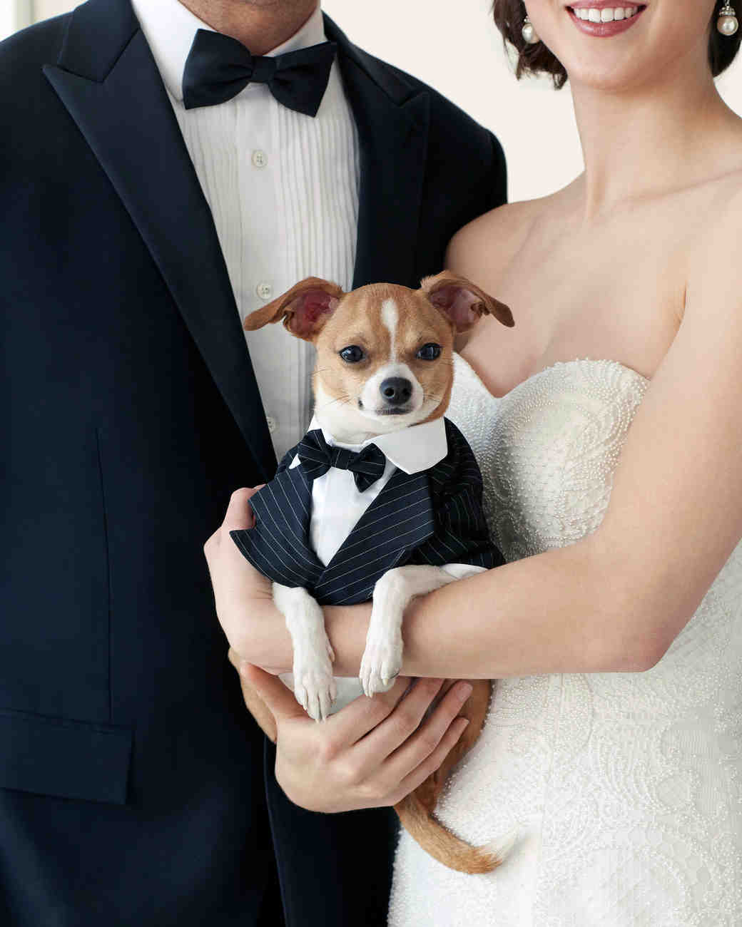 Dogs Can Get Aisle-Ready With the Launch of Martha Stewart Pets' Wedding Finery
