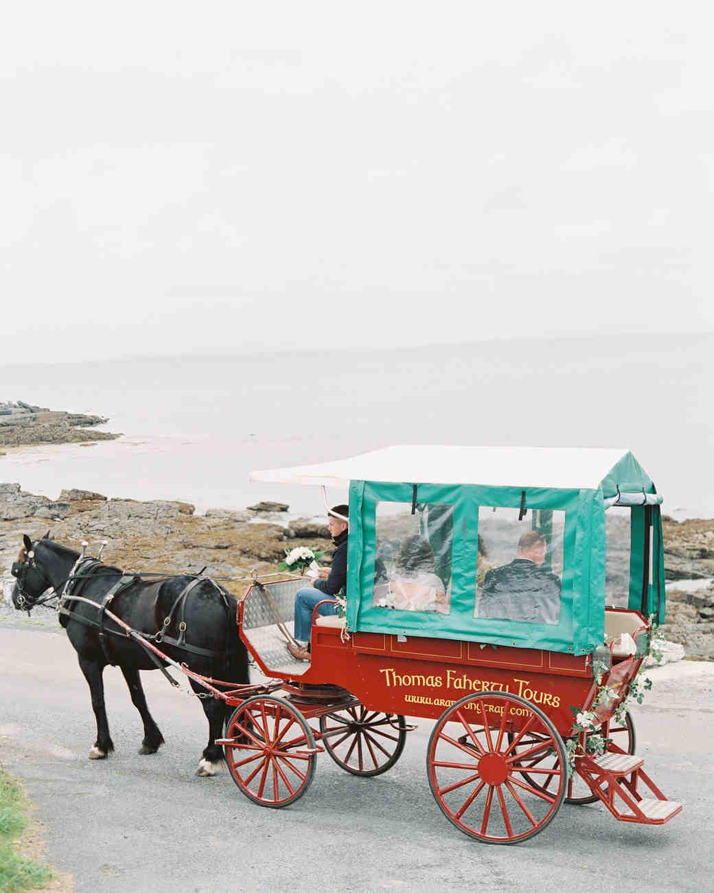 horse cart tours