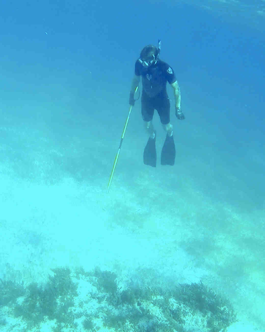 whitney-paul-caribbean-honeymoon-diary-spearfishing-0215.jpg