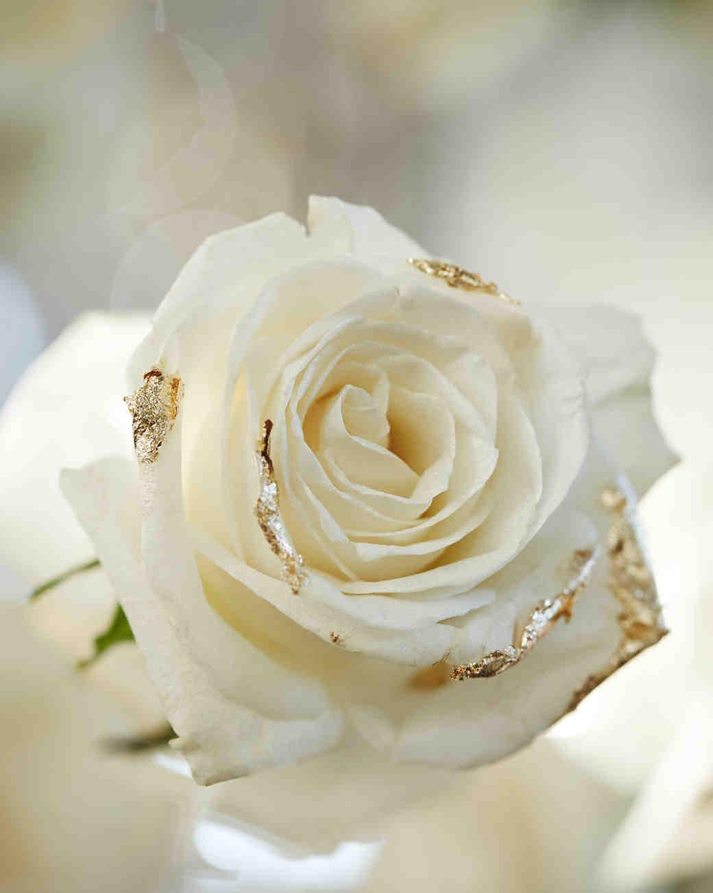 martha-weddings-party-2015-christian-oth-rose-151012-0164-1015.jpg
