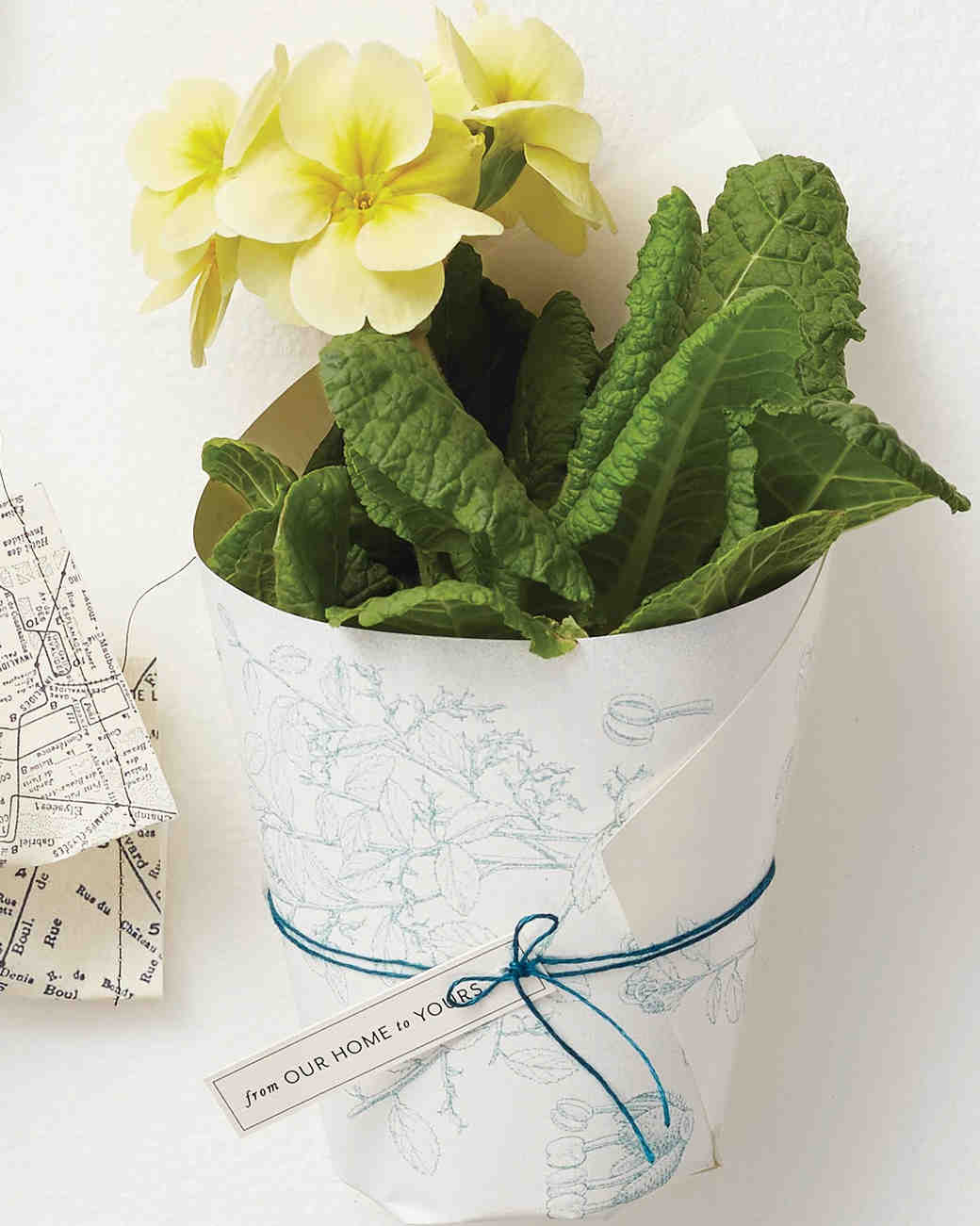 party-favors-patterned-paper-and-string-plant-favor-wrap-187-d112911.jpg