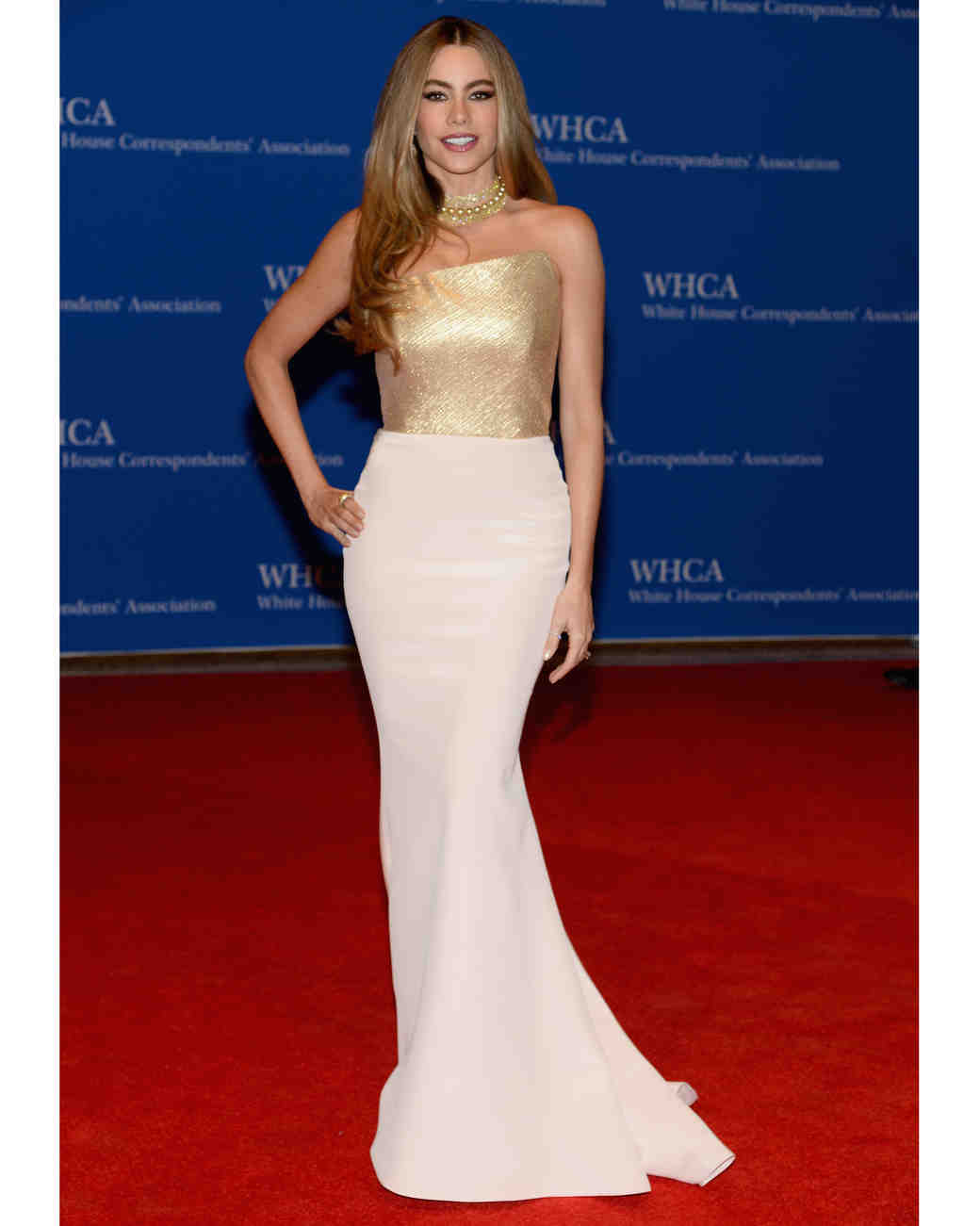 sofia-vergara-red-carpet-white-house-correspondents-dinner-romona-keveza-0815.jpg