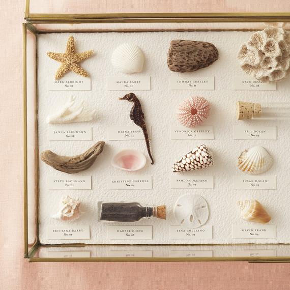 seashell-opener-605-d111930.jpg